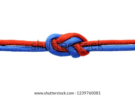 Knot  on a cord isolated on a white background . Royalty-Free Stock Photo #1239760081