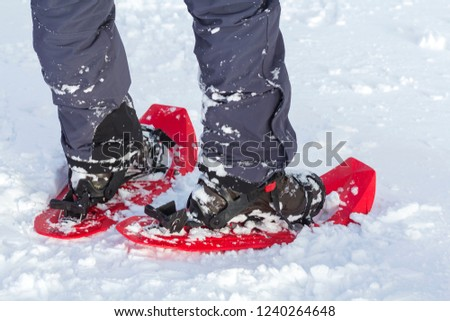 Close-up of man skier feet and legs in short plastic bright professional wide skis on white snow sunny copy space background. Active lifestyle, winter extreme sports and recreation concept. #1240264648