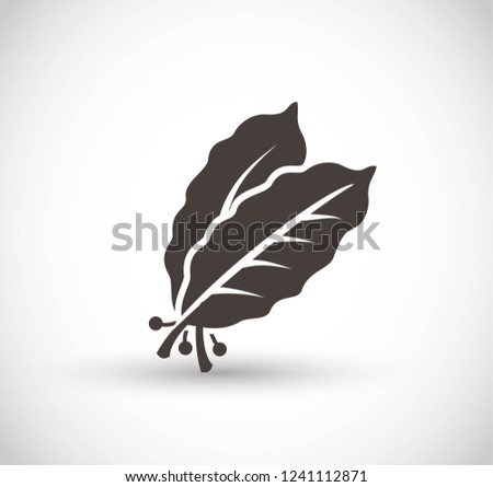 Bay leaves vector icon Royalty-Free Stock Photo #1241112871