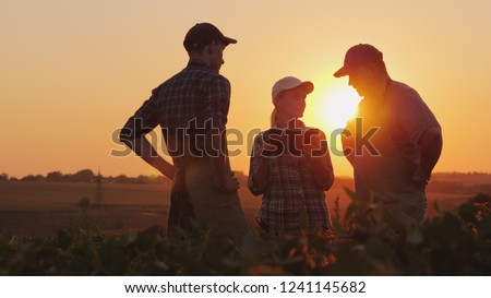 A group of farmers are discussing in the field, using a tablet. Two men and one woman. Team work in agribusiness Royalty-Free Stock Photo #1241145682