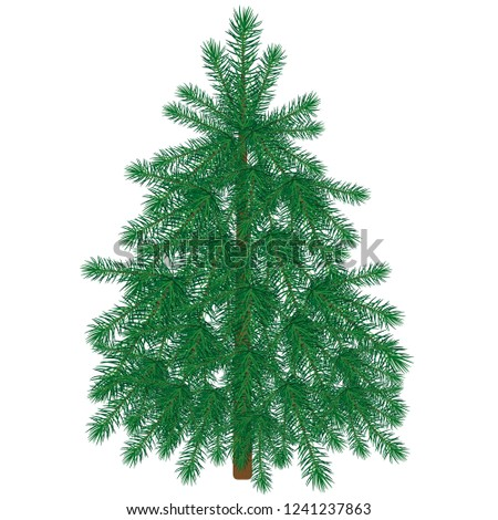 Green fir tree for Christmas and happy New Year cards. Vector illustration #1241237863