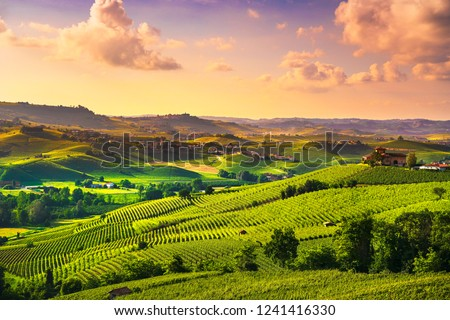 Langhe vineyards sunset panorama, near Barolo, Unesco Site, Piedmont, Northern Italy Europe. #1241416330