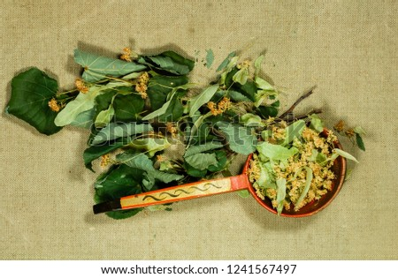 Linden. Dry plants for use in alternative medicine, phytotherapy, spa, herbal cosmetics. Preparing infusions, decoctions, tinctures. Used in powders, ointments, butter, tea, bath #1241567497