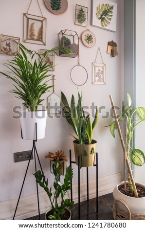 Home design interior beautiful architecture #1241780680