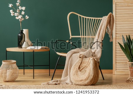Blanket on rattan armchair next to table with flowers in green flat interior with lantern. Real photo Royalty-Free Stock Photo #1241953372