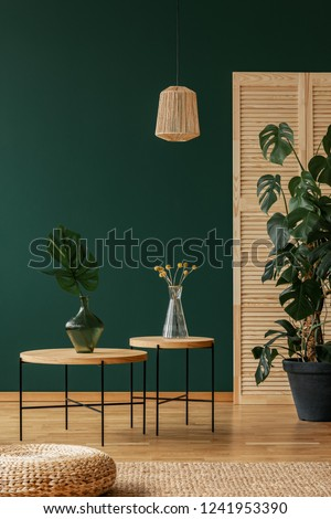 Lamp above tables with plants in green natural living room interior with pouf on carpet. Real photo #1241953390