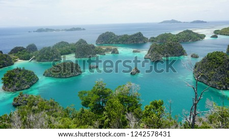 Sea lake in Raja Ampat, West Papua Indonesia #1242578431