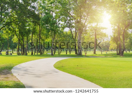 New pathway and beautiful trees track for running or walking and cycling relax in the park on green grass field on the side of the golf course. Sunlight and flare background concept. #1242641755