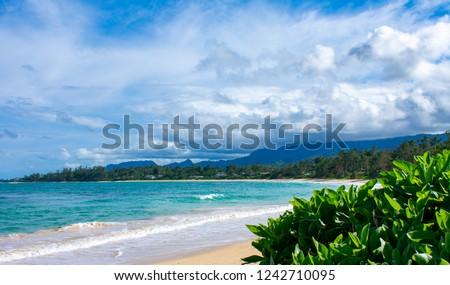 North Shore Hawaii Beach Royalty-Free Stock Photo #1242710095