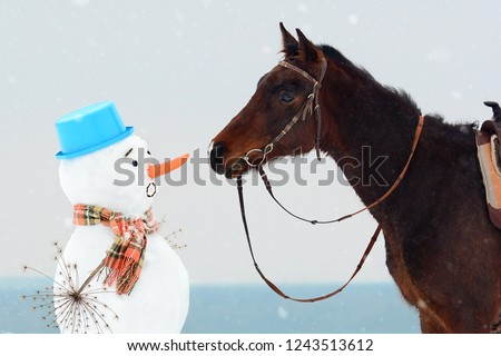 Equestrian look - horse watching the carrot nose of big snowman, trick or treat. Nordic humor, comic picture