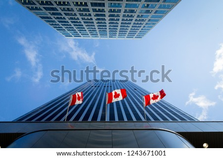 Three Canadian flags in front of a business building in Ottawa, Ontario, Canada. Ottawa is the capital city of Canada, and one of the main economic, political and business hubs of North America   #1243671001