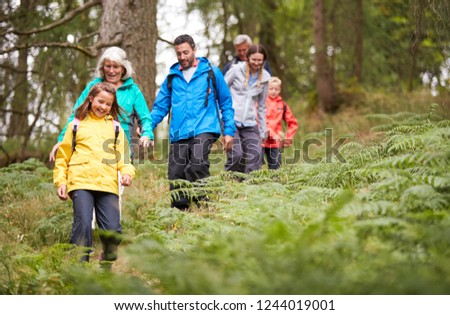 Multi generation family walking in line downhill on a trail in a forest during a camping holiday, Lake District, UK #1244019001