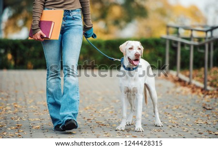Young woman holding books in a hand while walking with a dog. Friendship between human and dog. Pets and animals concept #1244428315