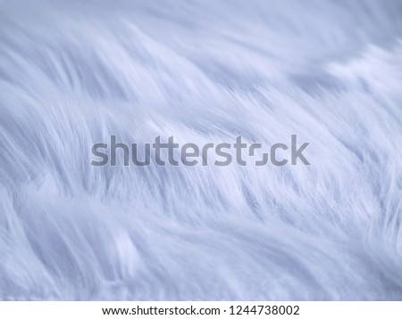 White fabric shaggy fur wool texture as background. #1244738002