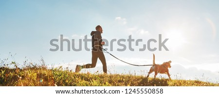 Canicross exercises. Man runs with his beagle dog at sunny morning. Healthy lifestyle concept. Royalty-Free Stock Photo #1245550858
