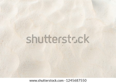 Sand on the beach full flame as background #1245687550