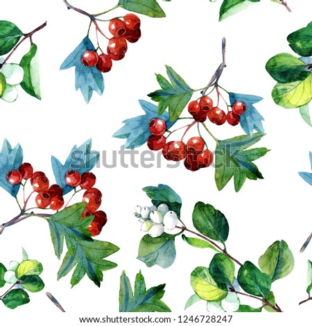 Plant seamless pattern of twigs with berries painted in watercolor. #1246728247