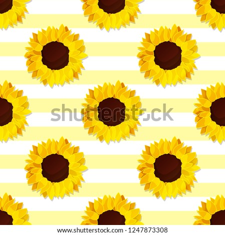 vector sunflower seed head flower seamless pattern