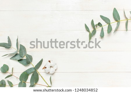 Eucalyptus twigs and cotton flower on white wooden background. Flat lay, top view, copy space. Floral background, flowers composition. #1248034852