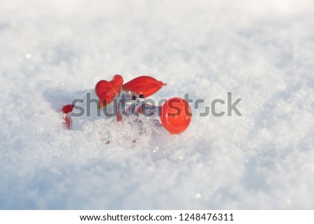 Happy new year with a pig in fresh snow as symbol of 2019. Winter Background. Happy new year holiday concept #1248476311