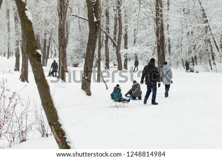 People with children walking in a snowy park in winter. #1248814984