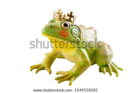 The tale of the Frog Prince and old fairytale concept with a toad wearing a king s golden crown and red lipstick marks from a kiss isolated on white background with a clip path cut out #1249558585