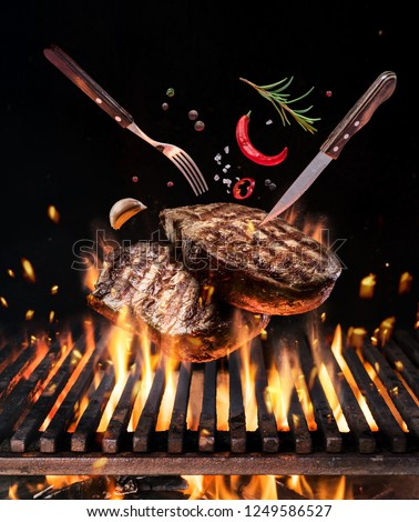 Beef steaks with vegetables and spices fly over the blazing grill barbecue fire. Concept of flying food. #1249586527