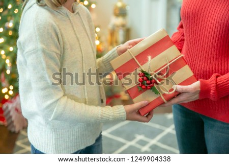 Two Female People Sharing Giving a Christmas Gift Inside Their Home #1249904338