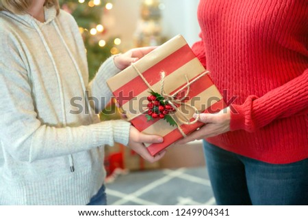 Two Female People Sharing Giving a Christmas Gift Inside Their Home #1249904341