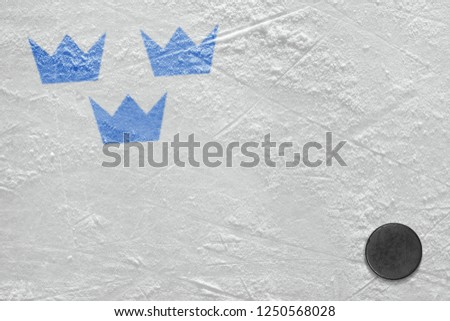 Color image on the ice hockey arena. Concept, hockey, background