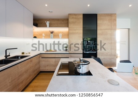 Interior of modern kitchen in a house #1250856547