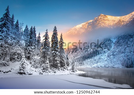 Winter mountain landscape at sunrise. Beautiful mountains and snowy fir trees on lakeside in clear morning with sunlight #1250962744