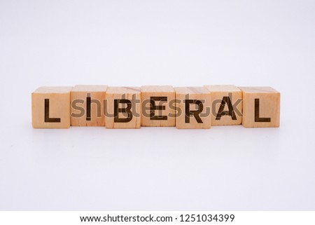 Liberal Word Written In Wooden Cube #1251034399