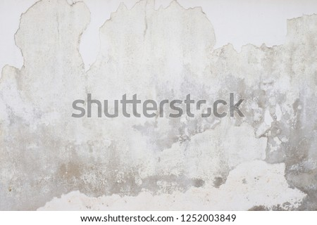 White  grey old  wall with shabby damaged plaster Cement and brick background of an vintage dirty exfoliating plaster  Textured background peeling of colour wallpaper cement #1252003849