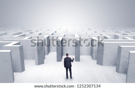 Businessman choosing between entrances in a middle of a maze #1252307134