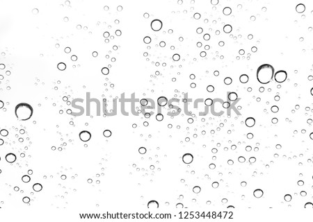 Rain drops on window glasses surface Natural Pattern of raindrops. Natural pattern of raindrops on white background for your design. #1253448472