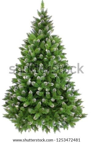 Green Pine, christmas tree with snow isolated on white closeup #1253472481