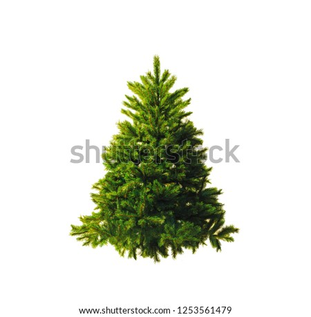 Artificial spruce. Christmas tree without ornaments isolated on a white background #1253561479