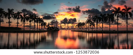 Panoramic palm tree island sunrise with dramatic clouds and vibrant sky over Atlantic Ocean in Miami Florida USA #1253872036