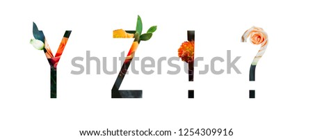 Flower Alphabet y, z, Question mark, exclamation mark made of Real alive flowers with Precious paper cut shape of letter. Collection flora font for spring and summer. #1254309916