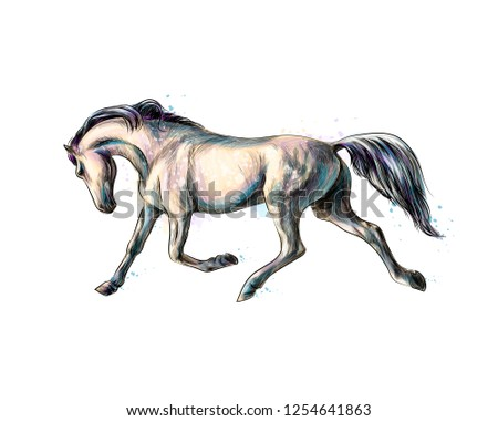 Horse run gallop from splash of watercolors. Hand drawn sketch. Vector illustration of paints #1254641863