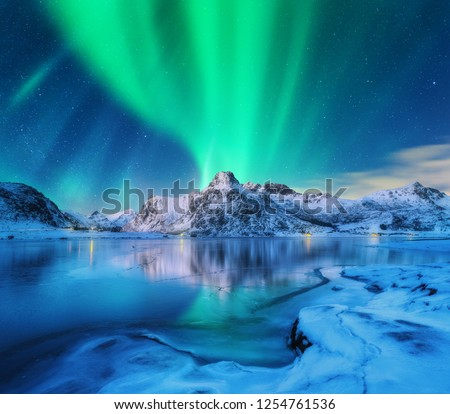 Aurora borealis over snowy mountains, frozen sea coast and reflection in water in Lofoten islands, Norway. Northern lights. Winter landscape with polar lights, ice in water. Starry sky with aurora #1254761536