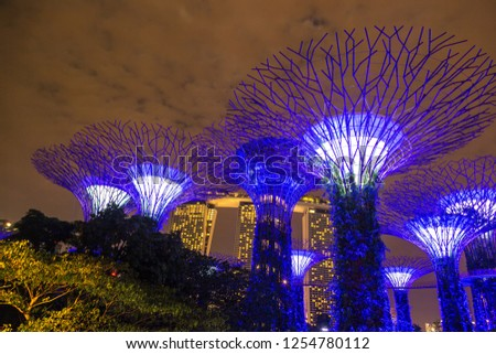 SINGAPORE - JUNE 23, 2018: The Supertree Grove at Gardens by the Bay in Singapore near Marina Bay Sands hotel at summer night #1254780112