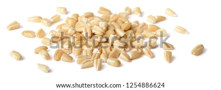uncooked steel cut oats isolated on the white background #1254886624