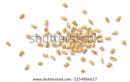 uncooked steel cut oats isolated on the white background, top view #1254886627