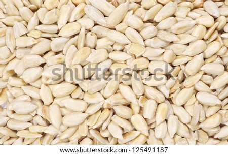 roasted sunflower seeds close up #125491187