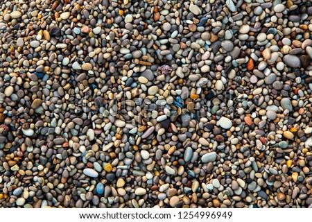 Sea pebbles. Background of pebbles. Wet stones. Multicolored pebbles. Sea shore. #1254996949