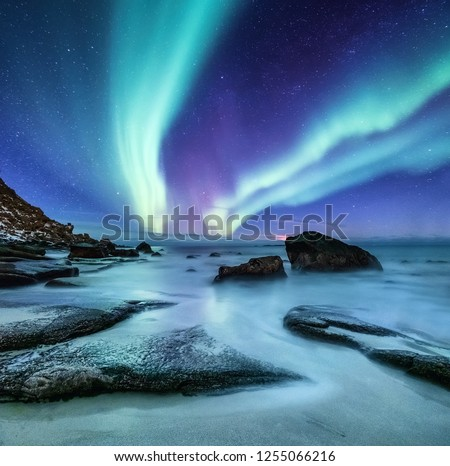 Aurora borealis on the Lofoten islands, Norway. Night sky with polar lights. Night winter landscape with aurora and reflection on the water surface. Natural background in the Norway #1255066216