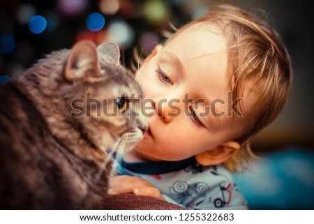 little boy kissing a cat on the background of Christmas lights #1255322683