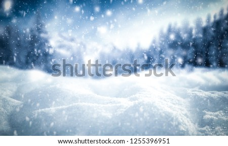 Winter background of snow and frost with free space for your decoration  #1255396951
